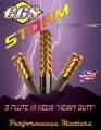 storm-flyer-cover-58149.jpg